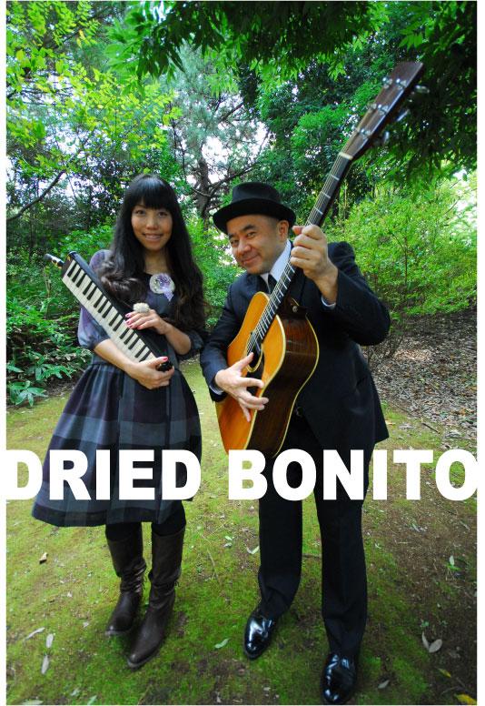 実況!! DRIED BONITO